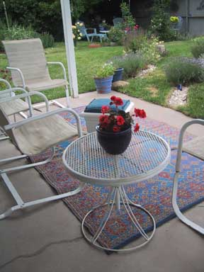 New rug and view of garden June 27.jpg