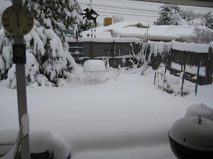 October snow 2009 backyard 2 med.jpg