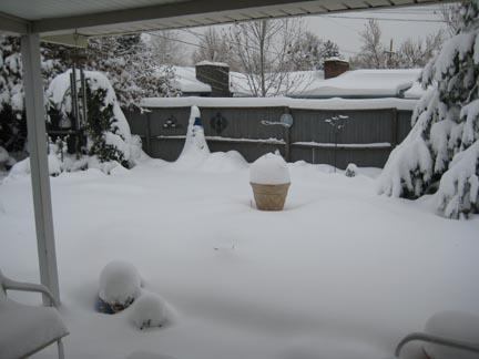 October snow 2009 backyard med.jpg