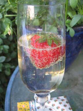 champagne w bubbly strawberry smr.jpg