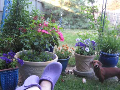 crocs pots lilah smr.jpg
